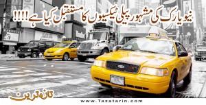 Futur of Yellow Cab in New York