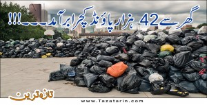 42  thousand pound garbage found in a house in Hawaei