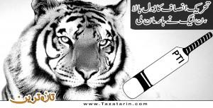 N league remain silent on PTI's success