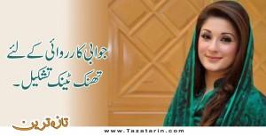 PMLN form a think tank to retaliate PTI