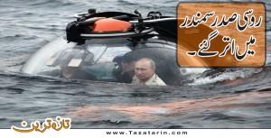 Russian president enters into sea