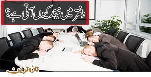 Why people sleep in office