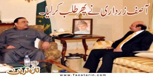 Former President Asif Zardari calls on Chief Minister Sindh