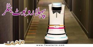World's first robot butler
