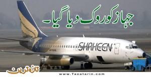 plane emergency halt