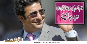 Wasim celebrates 2nd marriage birthday