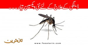 New vaccine is ready for dengue treatment