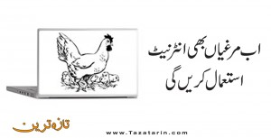 Now hens will also use internet
