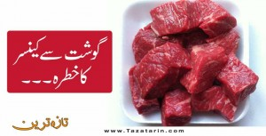 Danger of cancer from meat