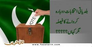 local body elections, punjab sindh