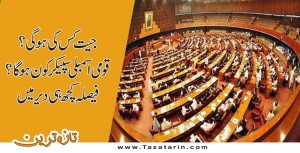 PTI Shafqat Mahmood, National Assembly Pakistan