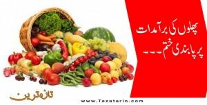 export vegetables