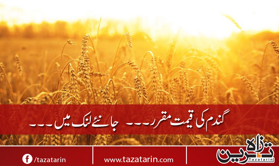 New rates of Wheat...