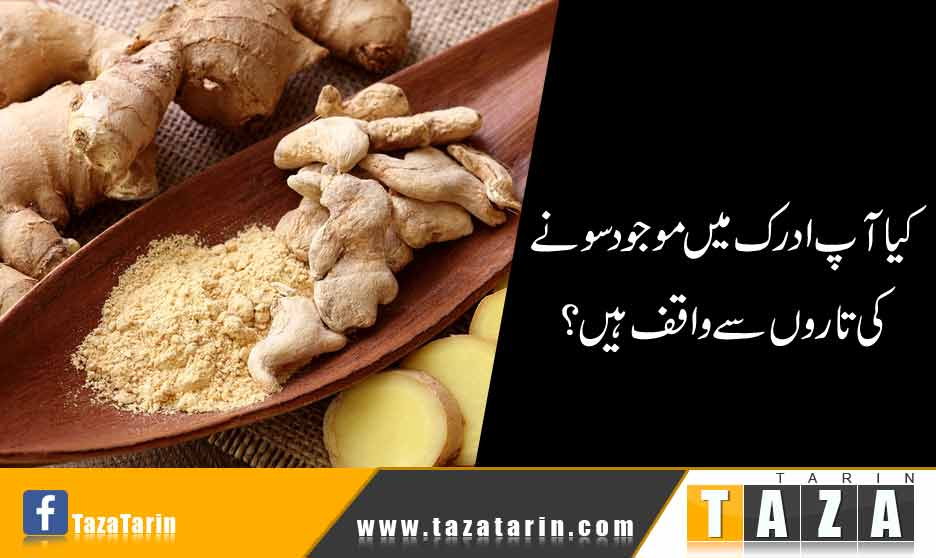what is the benefit of ginger in urdu?