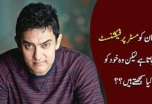I Am Mr Passionate, Not Mr Perfectionist Aamir Khan