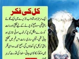 Urdu Short Story